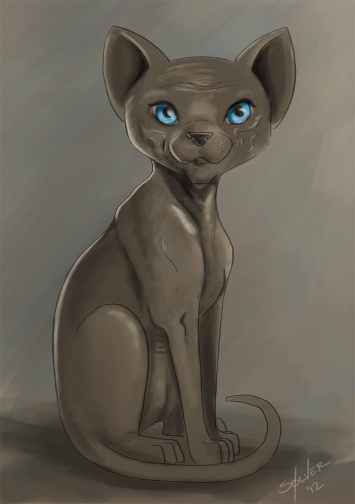 Blue eyed Sphynx